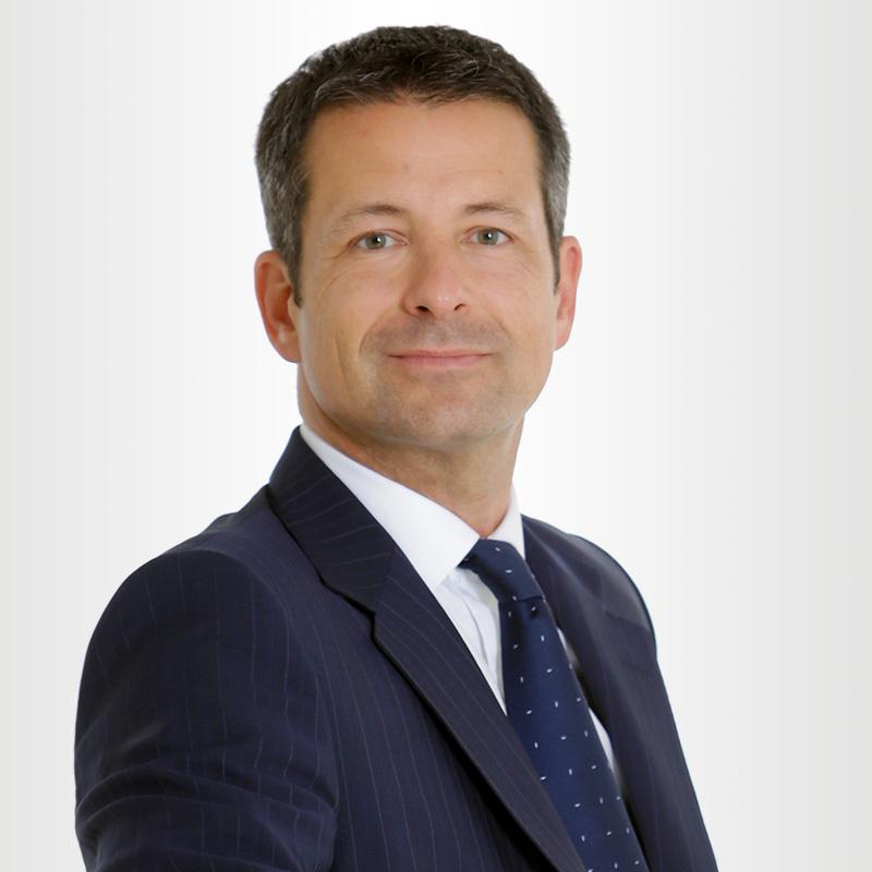 Gerhard Peller, Bladescape Geschäftsführer